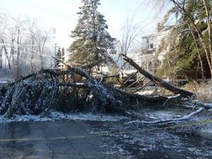storm clean up, storm work