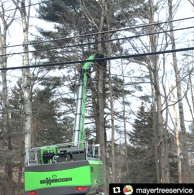 718e cutting trees near power lines
